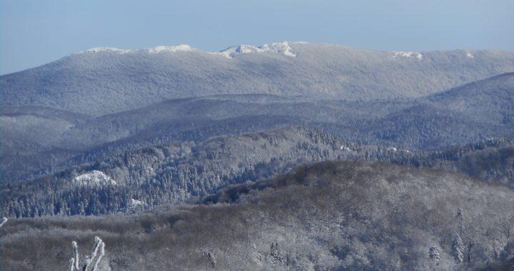 20. zimski pohod na Bjelolasicu