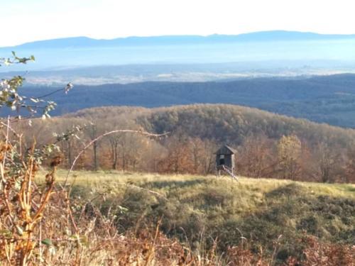 Moslovačka Gora